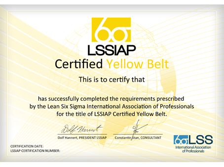 lean six sigma international association of professionals global